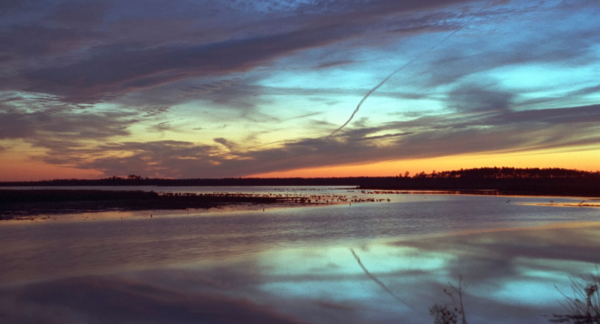 Blackwater National Wildlife Refuge Master Plan