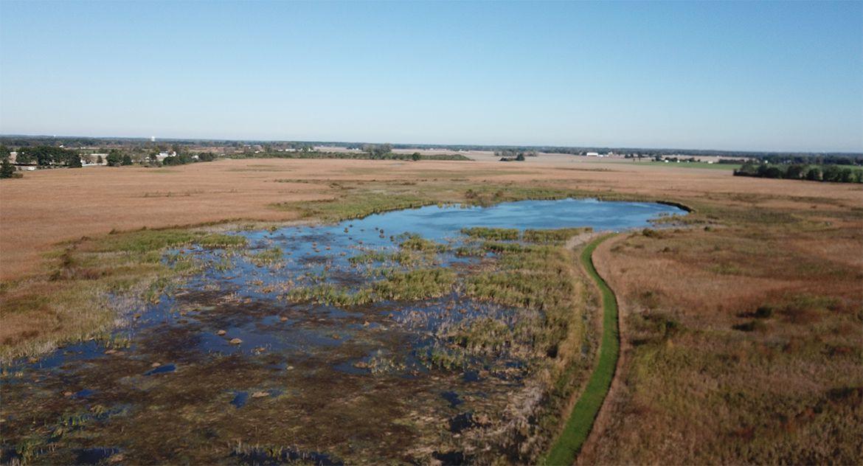 Constructed Wetlands Applications