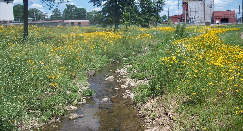 Orrville Stream Restoration