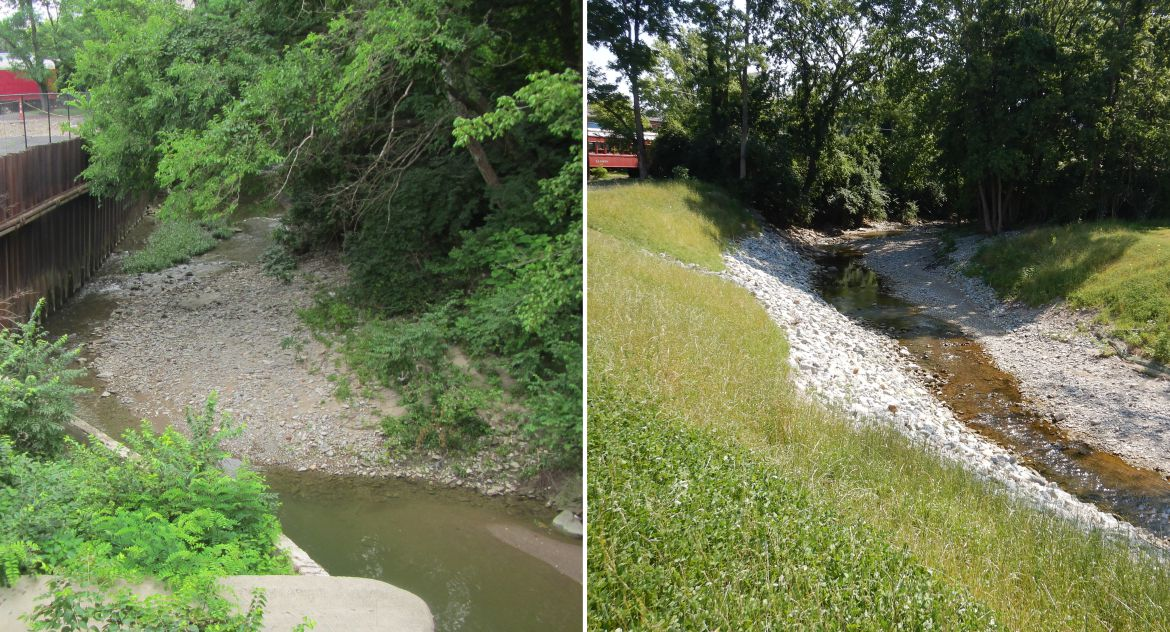 Turtle Creek Channel and Floodplain Restoration